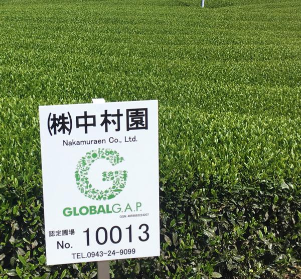 世界認証「GLOBALG.A.P.」